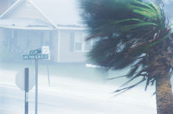 Hurricane in suburban neighborhood
