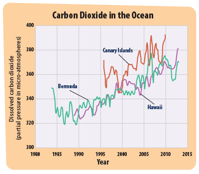 This graph shows three lines. Each line represents the amount of carbon dioxide in the ocean at a particular place where measurements have been collected.