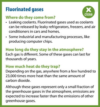 Flourinated Gases Popup Information