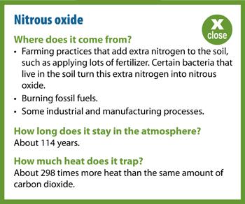 Nitrous Oxide Popup Information