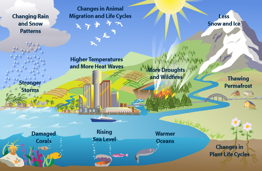Representation of the 11 signs of climate change