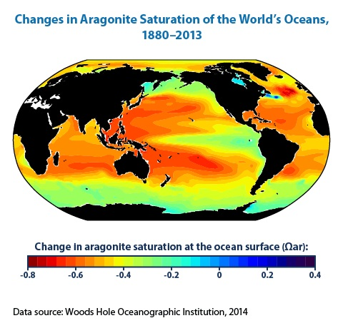 Color-coded map of the world showing changes in ocean acidity between the 1700s and the 1990s.