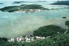 Aerial photograph of islands with lots of mangroves and some houses.