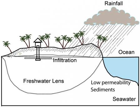 Drawing of a coastal parcel of land with a house and a well that extends into the freshwater lens. The image shows rainfall, the ocean, and land with a subterranean sketch. Land is labeled as low permeability sediments, freshwater lens, or infiltration.