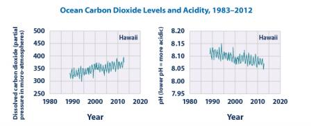 Two line graphs. The left graph shows dissolved carbon dioxide (partial pressure in micro-atmospheres) in Hawai'i, increasing from about 325 in 1988 to 380 in 2014. The right graph shows pH in Hawai'i, decreasing from 8.11 in 1988 to 8.07 in 2014.
