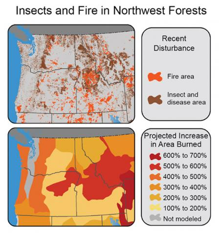 Areas burned from 1984-2008 or affected by insects or disease from 1997-2008. Expected increase in area burned resulting from 2.2°F average temperature increase ranges from 100-200% up to a 500-600% increase through eastern OR, middle of ID and western MT