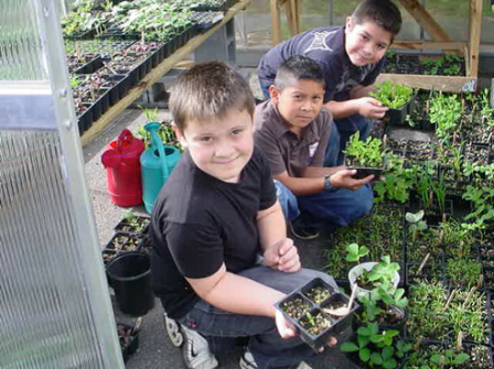 Greenhouse and gardeners at Oakley Elementary School