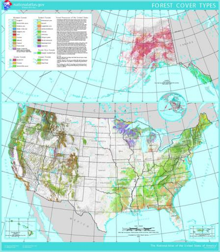 Map that shows the extent and type of forest cover in the United States. Forest types vary greatly from east to west and north to south, with Alaskan and Hawai'ian forests also varying greatly.