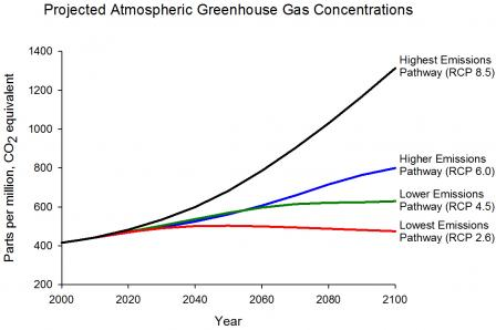 Graph displaying projected GHG concentrations for four different emissions scenarios: highest (RCP 8.5), higher (RCP 6.0), lower (RCP 4.5), and lowest (RCP 2.6). By 2100, their CO2 equivalents in ppm approximate 1350, 850, 650, and 450, respectively.