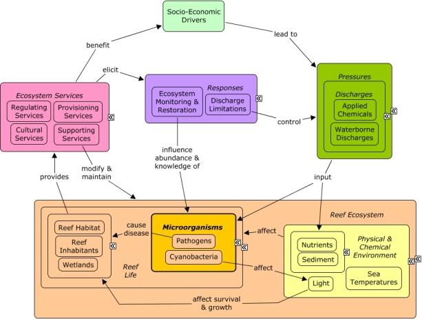 ReefLink Database | Research | US EPA
