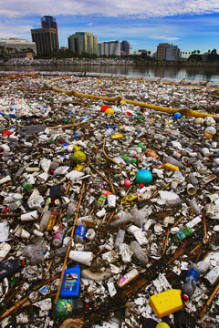 Plastic Ocean From Thriving Ecosystem To Trash Dumpster